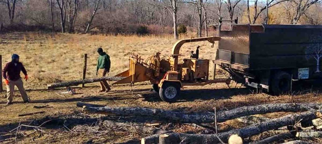 Best Land Clearing Loudoun County Va, Clarke County Va, and Frederick County Va