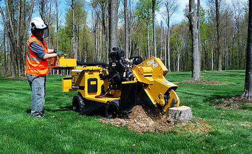 #1 Stump Grinding Loudoun County Va, Clarke County Va, and Frederick County Va