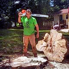 Safe Tree Removals Loudoun County Va, Clarke County Va, and Frederick County Va