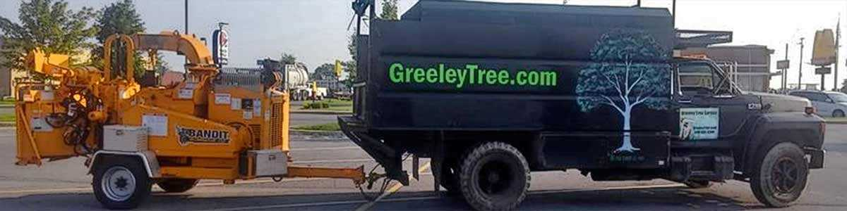 #1 Tree Service New Market VA